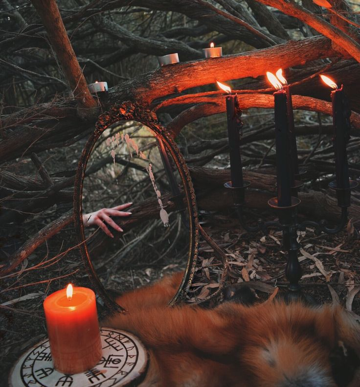 """dame-wolf: """" Divination at dusk ig: roux.fox """""""