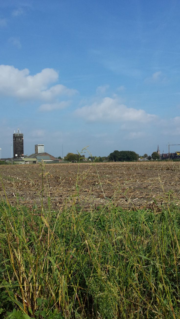 skyline van Oerle, links de graansilo - 2014 Foto: MR