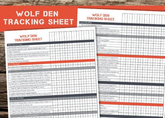 free printable to help den leaders keep track of their scouts requirements and…