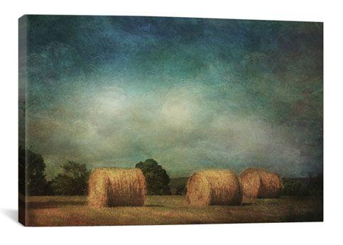 Hay Rolls by Dawne Polis Canvas Print - iCanvasART.com