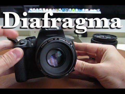 Lección 4 - Diafragma (Desenfoque o profundidad de campo) - YouTube
