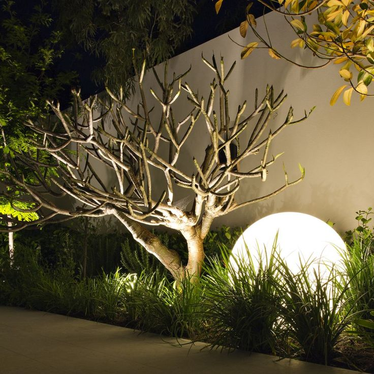 Eye catching ball shaped lighting set as outdoor lamp to brighten branksome house landscaping with greenery