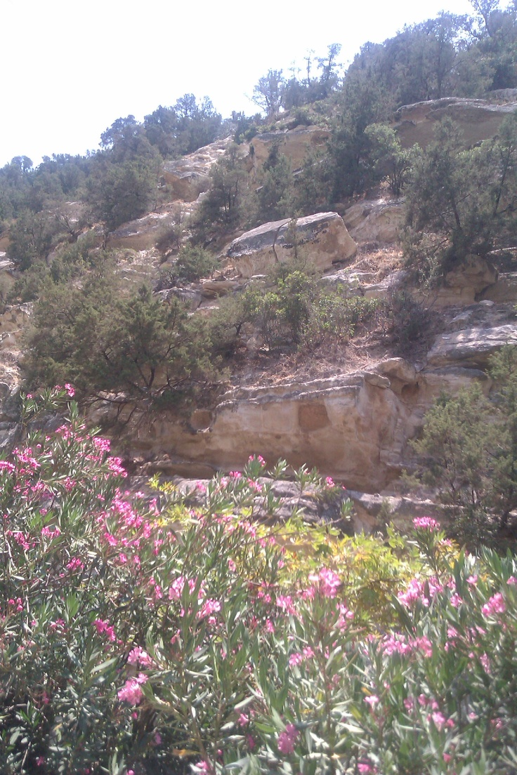 Avakas Cyprus