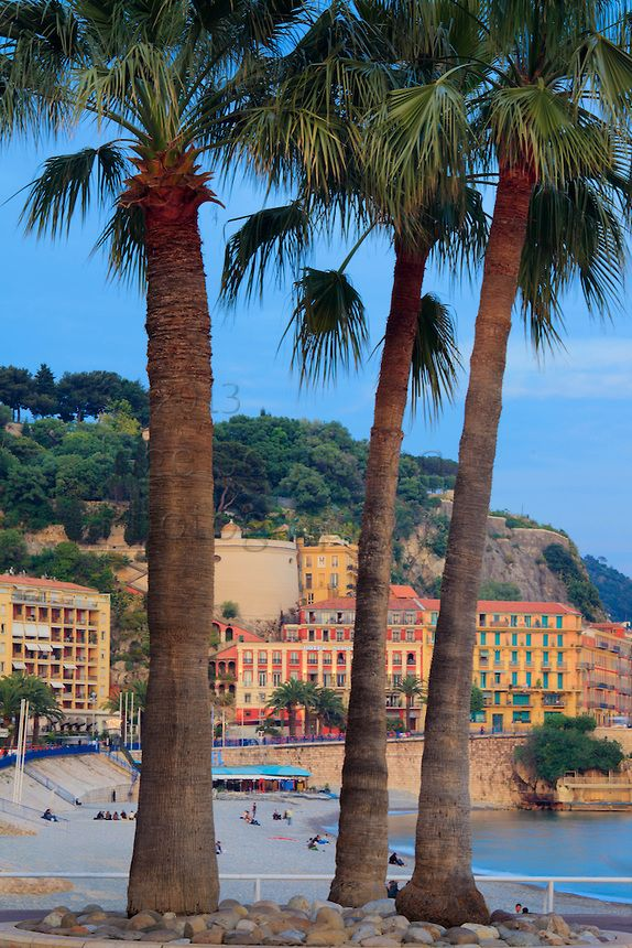 Palm trees on Promenade des Anglais in Nice, France on the French riviera