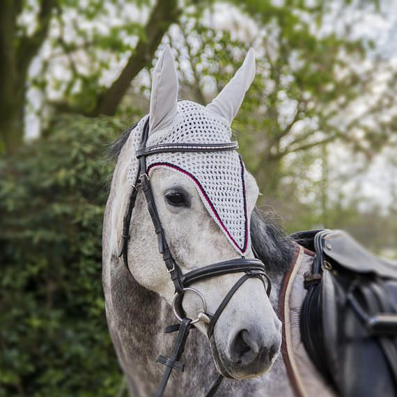 Long fly bonnet, flybonnet, long earbonnet, ear bonnet horse, horse fashion, horse pic, photography horse, pony fly bonnet, grey fly bonnet, showjumping, dressage, sportshorse, equine, equestrian