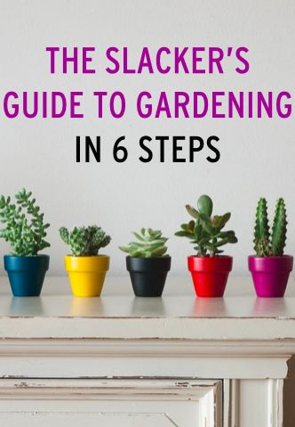 Tips for choosing the right plans, mastering indoor gardening, & more