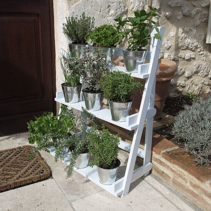 plant theatre in powder blue by plant theatre | notonthehighstreet.com