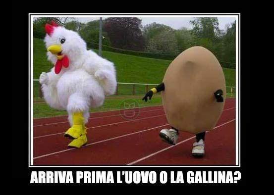 Finalmente lo scopriremo!  #bastardidentro #uovo #gallina #gara