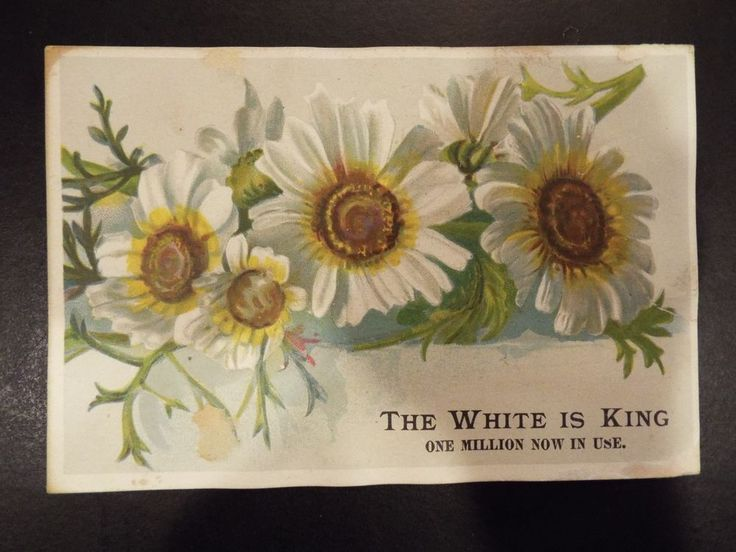 """White Sewing Machine Co. """"The White is King"""" Victorian Trade Card 1891"""