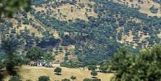 Parques Naturales de Andalucia
