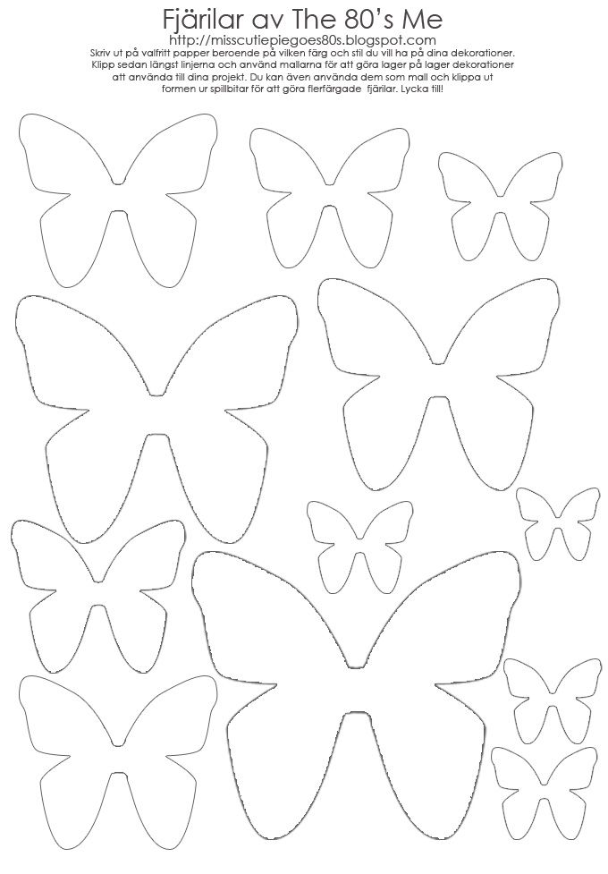 martha stewart butterfly template - 39 best images about on pinterest