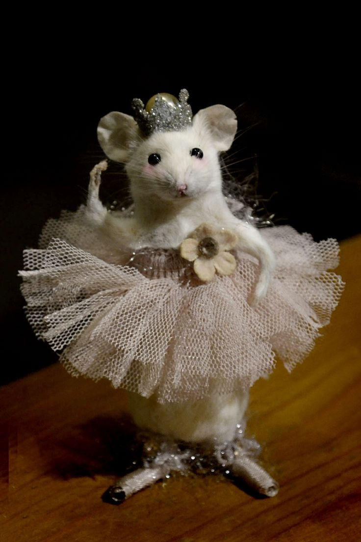 Ballerina Mouse by Deni Kendig of Sparrowsongs- my mom makes these incredible miniature, lifelike mice, each with their own personality and beautiful costume. She is so talented- go check her page out! @Denise Kendig
