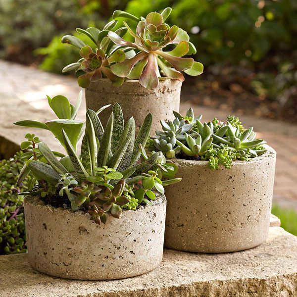 Beautiful DIY Hypertufa Pots Made from a mixture of Portland cement perlite or vermiculite