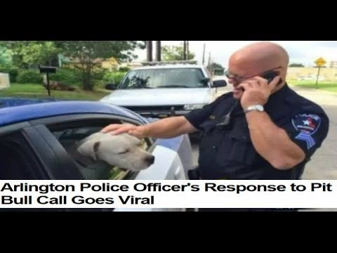 "Pawesome Policeman Cop Finds ""Aggressive"" Pit Bull – What He Did Next Will Restore Your Faith In Hoomanity"