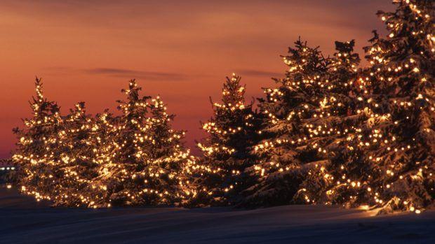 Free Desktop Christmas Lights Wallpapers Winter