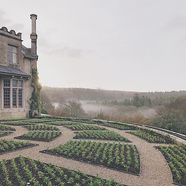 I have loved our sunrise walks through the gardens at Hotel Endsleigh, watching the mist roll in over the Tamar river below. ⭐