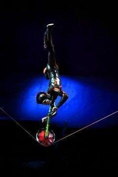 Cirque du Soleil. | OVO Cirque du Soleil - Ocio DF