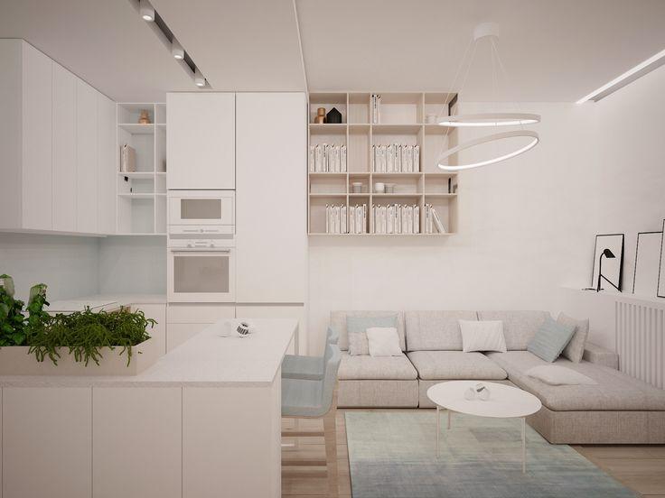 Nowoczesne, designerskie jednopokojowe mieszkanie na osiedlu Francuska Park, przy ul. Francuskiej, idealne dla singla lub pary. Wnętrze nowoczesnego apartamentu zaprojektowano w stonowanej, eleganckiej kolorystyce. Biel ścian doskonale komponuje się z podłogowymi panelami z jasnego drewna oraz delikatnymi, wysublimowanymi meblami, a także estetycznymi dodatkami nadającymi wnętrzu niepowtarzalny i wyjątkowy charakter.