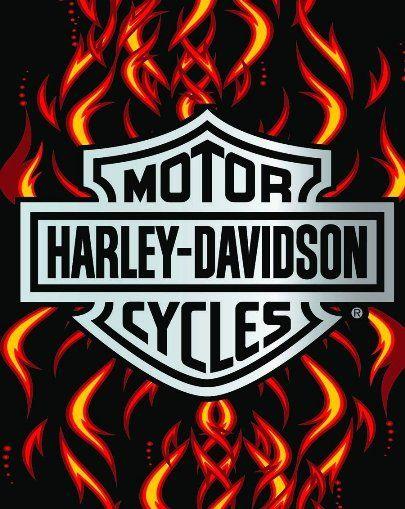Top 102 Ideas About Harley Davidson Logos On Pinterest Flame Wallpaper