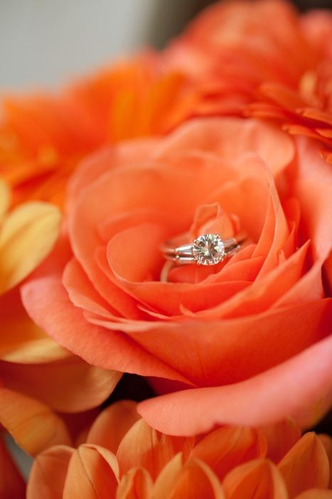 Please Repin & Share | for more Unique Wedding Photo Ideas visit…