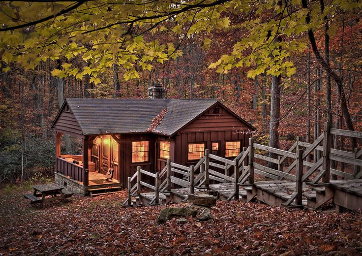 Cabin In The Woods Photograph Cabin In The Woods Fine
