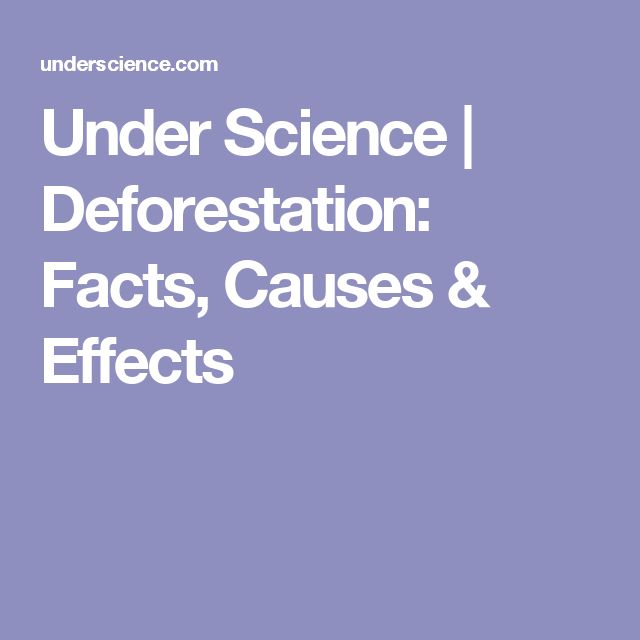 A concise summary of deforestation facts, causes and effects is provided in this article from the website Under Science.