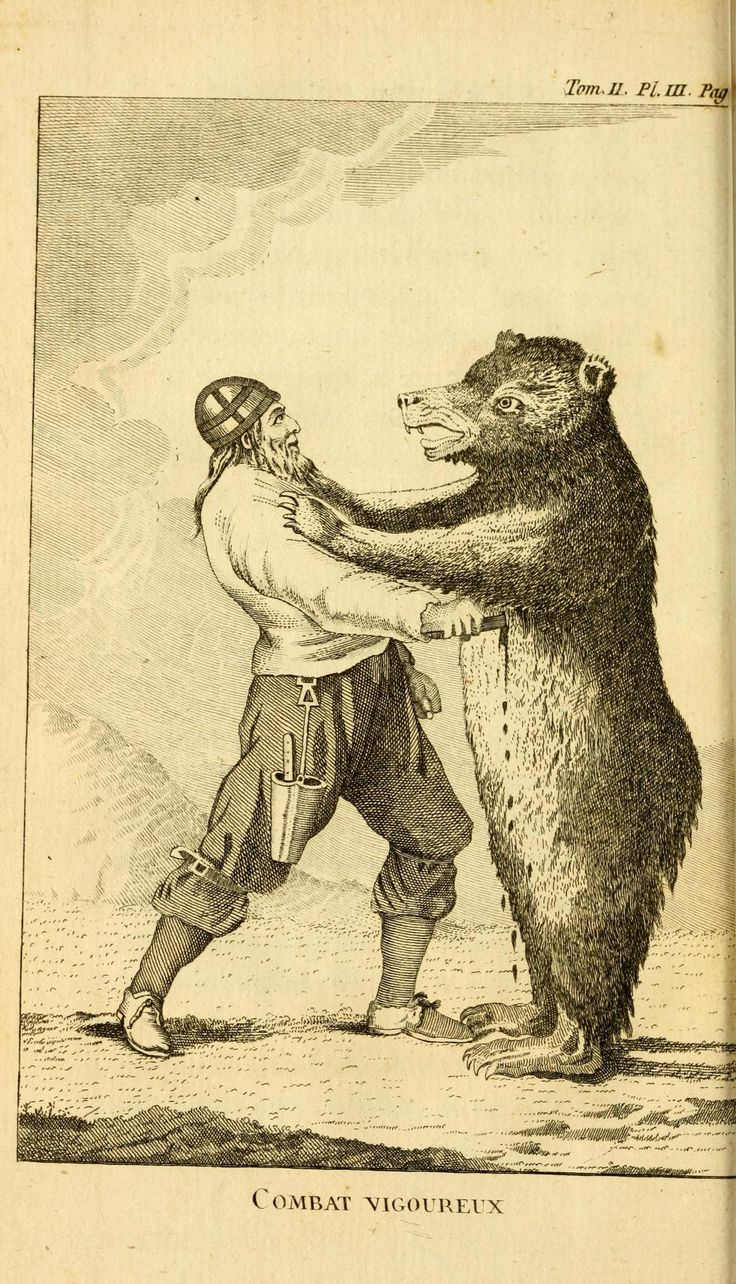 environment-disaster-and-accidents-bear-wrestling-viking