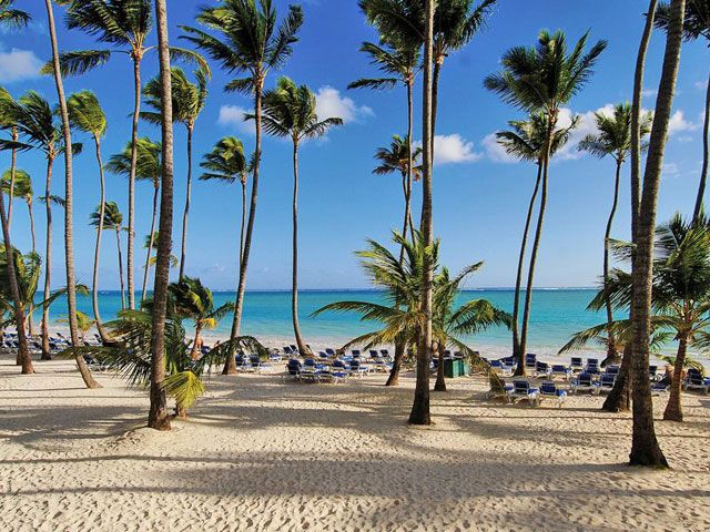 Barcelo Bavaro Beach, Adults-Only - All-Inclusive in Bavaro-Punta Cana, DR | BookIt.com