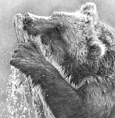 17 best Animalist: Lisandro Pena images on Pinterest ...  17 best Animali...