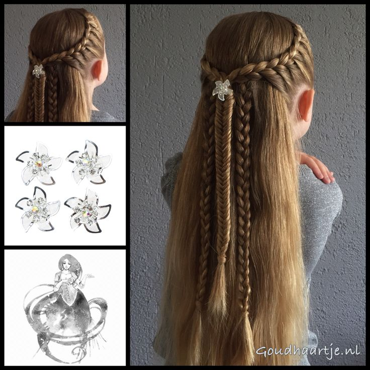 Tie back hairstyle, two lace braids, two regular 3 strand braids and a fishtail braid.