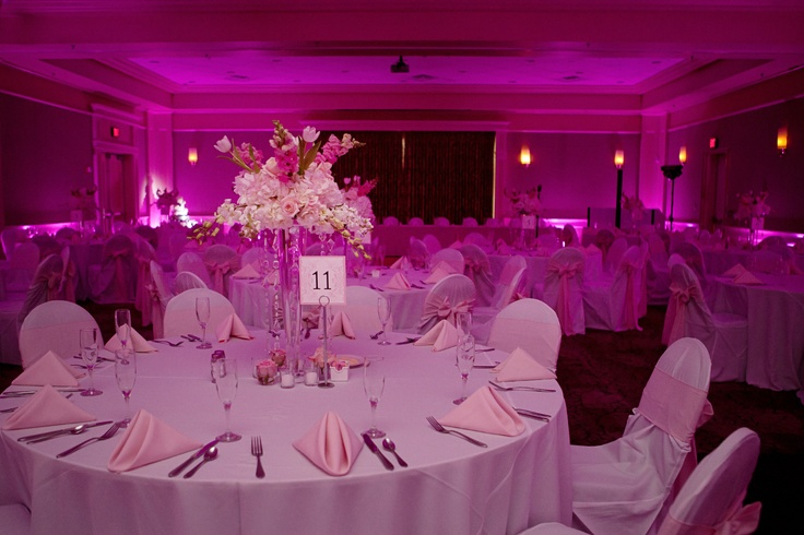Pretty in Pink~  Soundwave LED Lighting in pink at Leu Gardens to accent the soft pink napkins and soft pink floral.  Photo by Brandy Burridge