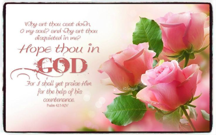Why art thou cast down, O my soul and why art though disquieted in me Hope thou in God for I shall yet praise Him for the help of His countenance.  Psalm 42 5