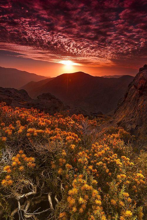 un coucher de soleil de l'automne magnifique n'Est-ce-pas ??
