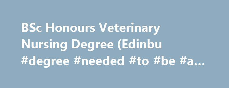 BSc Honours Veterinary Nursing Degree (Edinbu #degree #needed #to #be #a #nurse http://san-antonio.remmont.com/bsc-honours-veterinary-nursing-degree-edinbu-degree-needed-to-be-a-nurse/  # BSc Honours Veterinary Nursing Degree (Edinburgh Napier University) Course overview Choosing to study this course awarded by Edinburgh Napier University and delivered in conjunction with The College of Animal Welfare gives you the unique opportunity to study the only veterinary nursing degree programme…