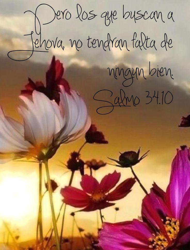 Salmo 34:9 - 10 Temed a Jehová, vosotros sus santos, Pues nada falta a los que le temen. Los leoncillos necesitan, y tienen hambre; Pero los que buscan a Jehová no tendrán falta de ningún bien.♔