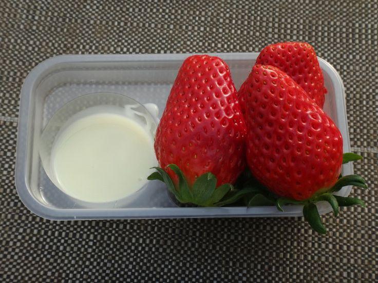 Condensed Milk & Strawberry ( Strawberry Picking )