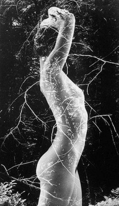 Symbiosis byRuth Bernhard, 1971.
