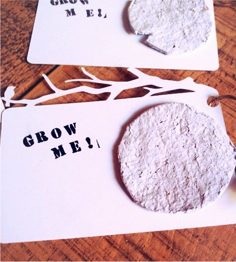 Great gift tags or card insert or bookmark idea....plantable seed paper! Check out this easy tutorial! I think this would be a great insert for a birthday or thank you card (but I'd definitely put it in a cute colorful stamped card!)