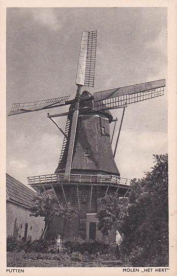 Molen in 1975