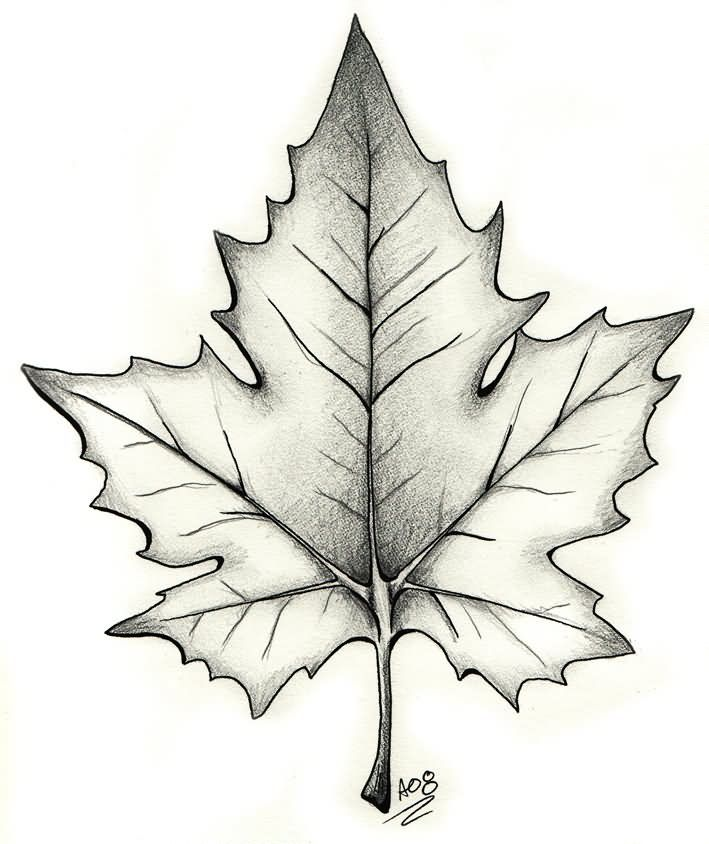 Black And Grey Maple Leaf Tattoo Design
