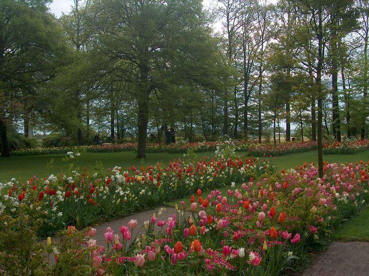 Il Giardino dei Tulipani - Villa Pisani Bolognesi Scalabrin - Vescovana (Padova)
