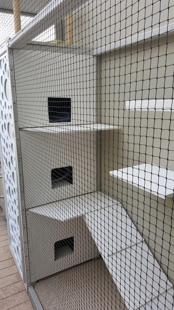 Cat Enclosure, Cat Beds, Small Courtyards, Doors, Cats, Gatos, Kitty Cats,  Kitty