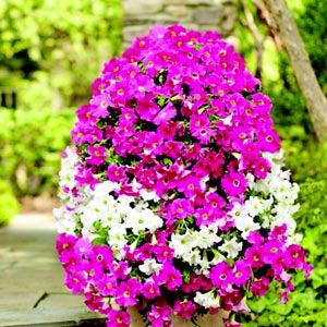 Build a Flower Tower, posted by Home Depot  http://gardenclub.homedepot.com/build-a-flower-tower/