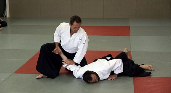The 58 Best Aikido Images On Pinterest Hapkido Aikido And Marshal
