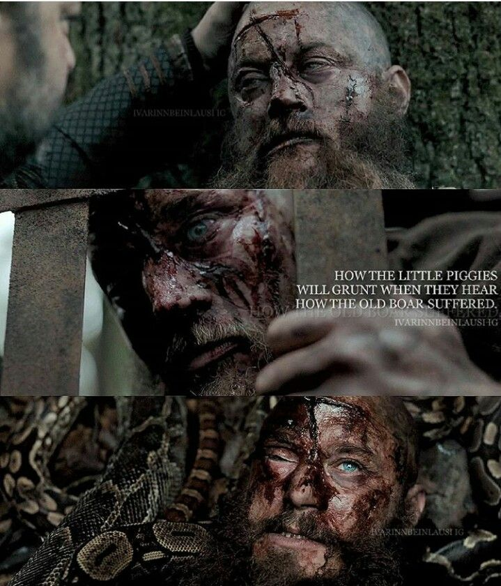",,How the little piggies will grunt when they hear how the old boar sufdered"" - Ragnar Lothbrok"