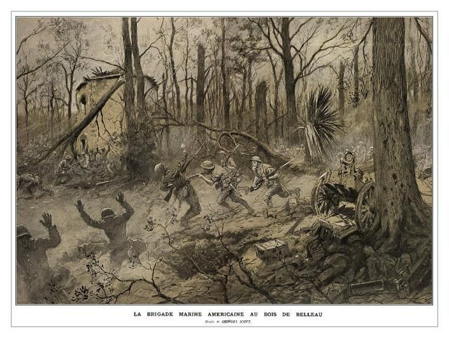 Becoming Devil Dogs: Battle of Belleau Wood: Battle of Belleau Wood