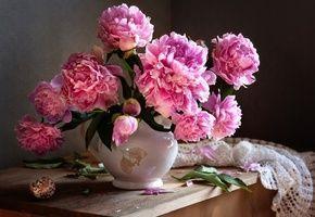 Обои кувшин, цветы, пионы, листья, ракушка, шаль