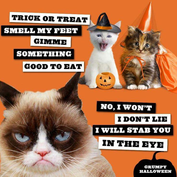 It was a Grumpy Cat Halloween!