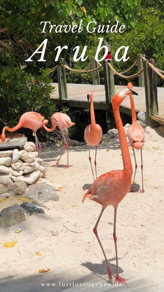 Reisetipps für deine Reise nach Aruba, der Aruba Travel Guide. #Aruba #Karibik …