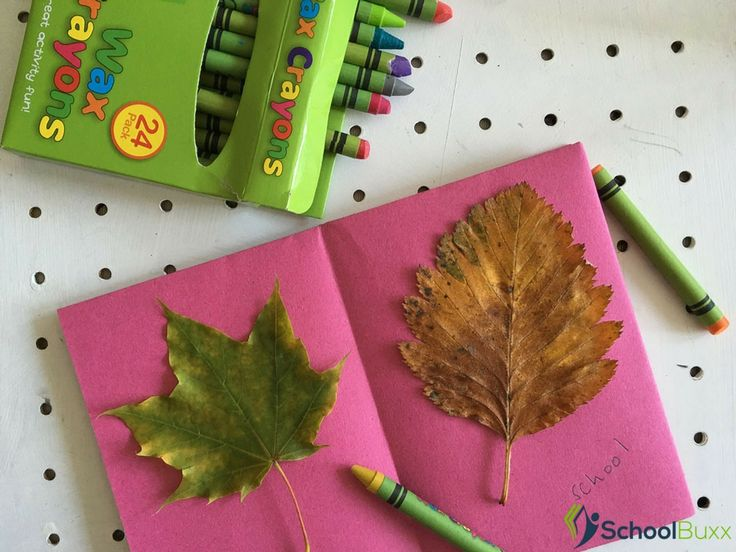 Ask Your #kids To Collect Leaves Of All Different Shapes